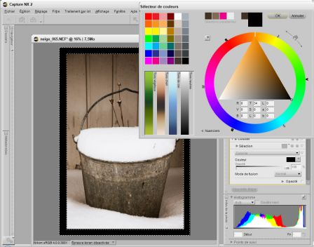 frame_colorize.jpg